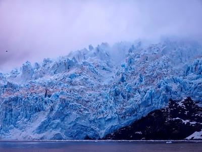 KenaiFjords_BlueGold_2016_08_06_14-46-51_E-M1            _OLYMPUS M 12-40mm F2 8_P8061761_©2016_StudioXEPHON