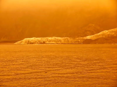 KenaiFjords_BlueGold_2016_08_06_14-48-36_E-M1            _OLYMPUS M 12-40mm F2 8_P8061772_©2016_StudioXEPHON