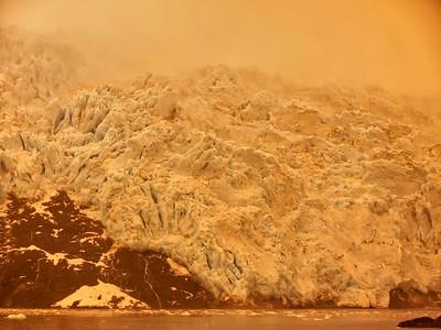 KenaiFjords_BlueGold_2016_08_06_14-43-39_E-M1            _OLYMPUS M 12-40mm F2 8_P8061736_©2016_StudioXEPHON