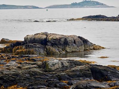 OceanPoint_2016_09_01_09-02-41_E-M1            _OLYMPUS M 40-150mm F2 8_P9012859_©2016_StudioXEPHON