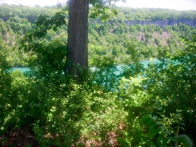 NiagaraGlen_2016_06_11_14-11-35_E-M1_Olympus M ZUIKO DIGITAL ED 12-40mm 1-2 8__6116991_©2016_StudioXEPHON