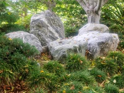 Japanese Friendship Garden_2016_06_30_10-16-22_E-M1            _OLYMPUS M 12-40mm F2 8__6307791_©2016_StudioXEPHON