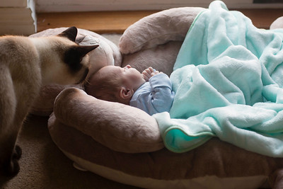 Baby-Photography-36