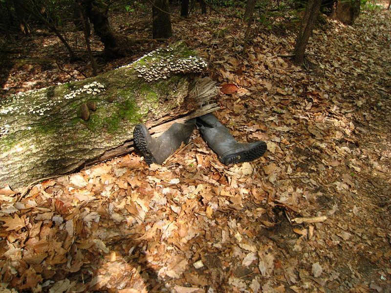 Ex-hiker