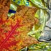 Autumnal Aluminum
