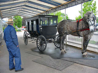 Amish in Indiana