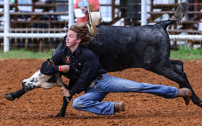 Jerry Easler of Jennings, FL, competes in the Boys 13-15 Chute Doggn event during the 2017 Elite Youth Rodeo Challenge at the Don Owen Complex in Conway Saturday, July 1, 2017.