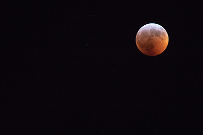 Super Blood Moon Lunar Eclipse 1/20/2019