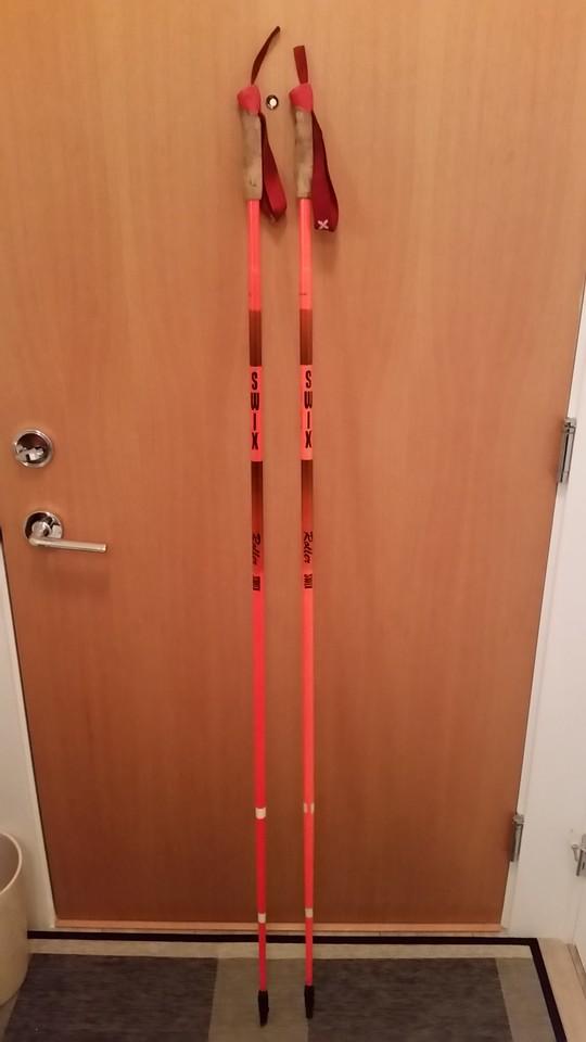 roller ski poles