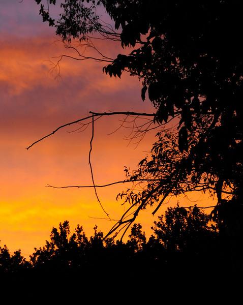Sunrise in Clunes