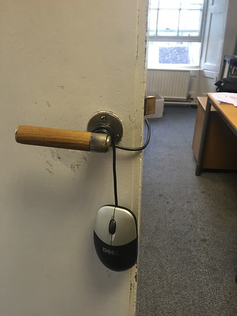 Our new office pet - it's a Do(o)rmouse.....