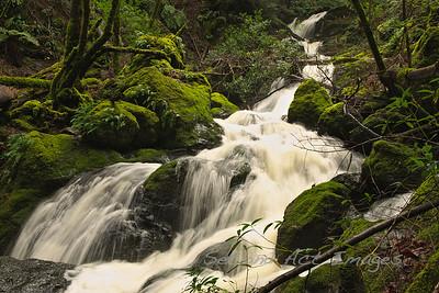 Catarac Falls, Marin, CA