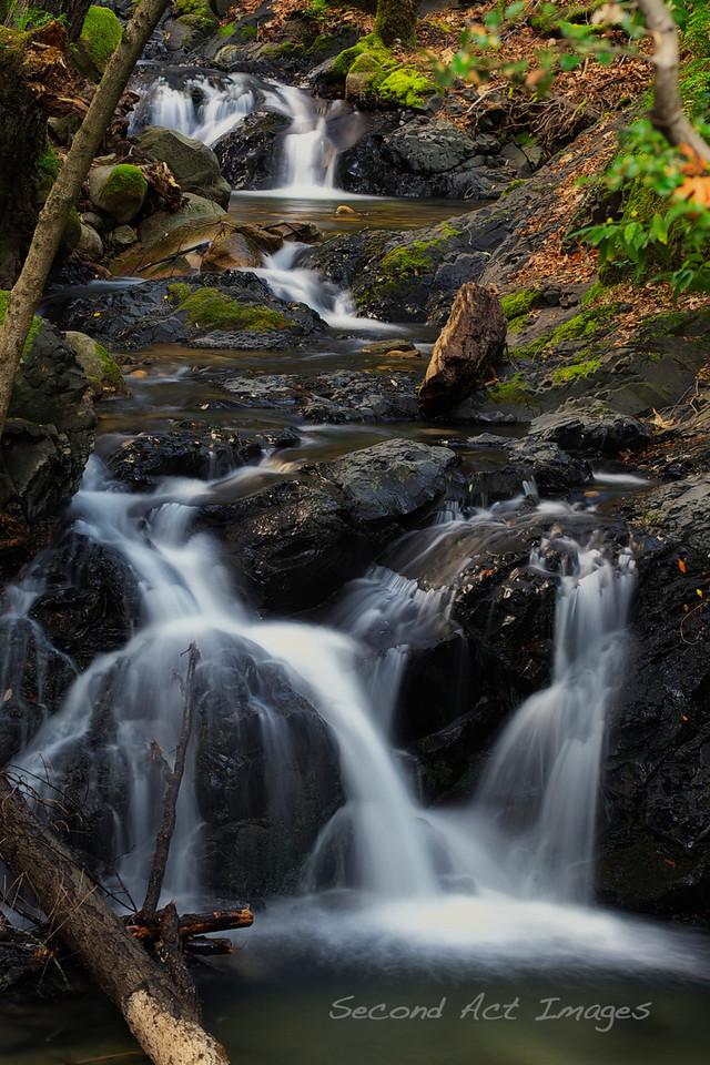 Waterfall - Uvas Canyon Park, CA