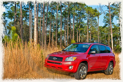 Rav 4 is my light SUV of choice.  It is spunky and very easy to handle.  Plenty of luxury inside for the discerning driver.  I have just ordered one for myself!  Who could ask for anything more?  When you think Toyota, think Allen Toyota!!