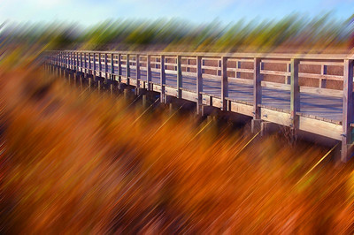 Pier at the Gulfport side of Back Bay with a Motion Blur and some color enhancements on it compliments of Photoshop CS3.