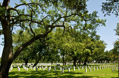 Quiet Peace  Biloxi National Cemetary is a veterans' cemetary with hundreds of tombs all standing straight like little soldiers amassed within the stately Oak trees.