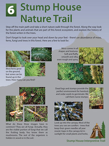 6 Nature Trail Final