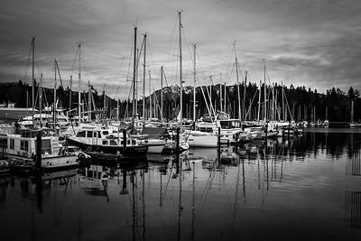 Vancouver Harbor Black & White