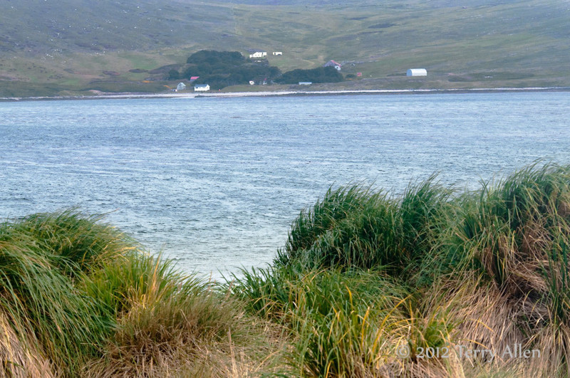 McGill-farm,-Carcass-Island,-Falkland-Islands