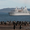 Cruise ship with gentoo penguins
