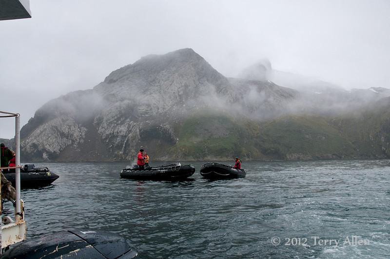 ,-Eisehul-Bay,-South-Georgia-Island