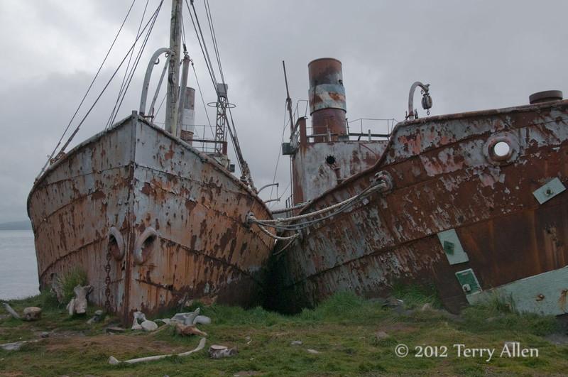 Ships Dias-&-Albatross,-Grytviken,-South-Georgia-Island