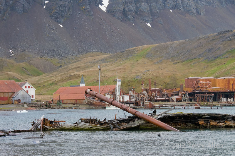 Whaling-station-and-wreck,-Grytviken,-South-Georgia-Island
