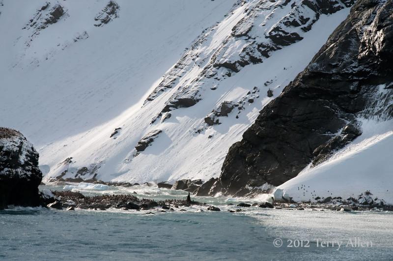 Shakleton's-camp-site-3,-Elephant-Island,-South-Shetland-Islands