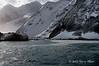 Point-Wild-1,-Elephant-Island,-South-Shetland-Islands
