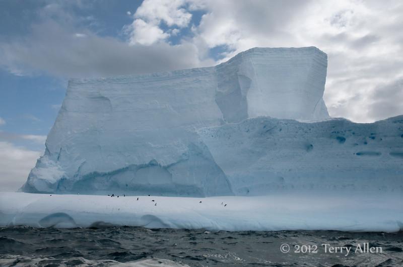 Iceberg-5,-Elephant-Island,-South-Shetland-Islands