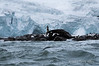Point-Wild-monument-1,-Elephant-Island,-South-Shetland-Islands