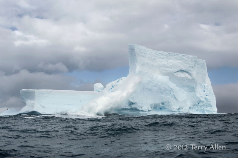 Iceberg-6,-Elephant-Island,-South-Shetland-Islands