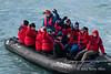Zodiac-2,-Elephant-Island,-South-Shetland-Islands