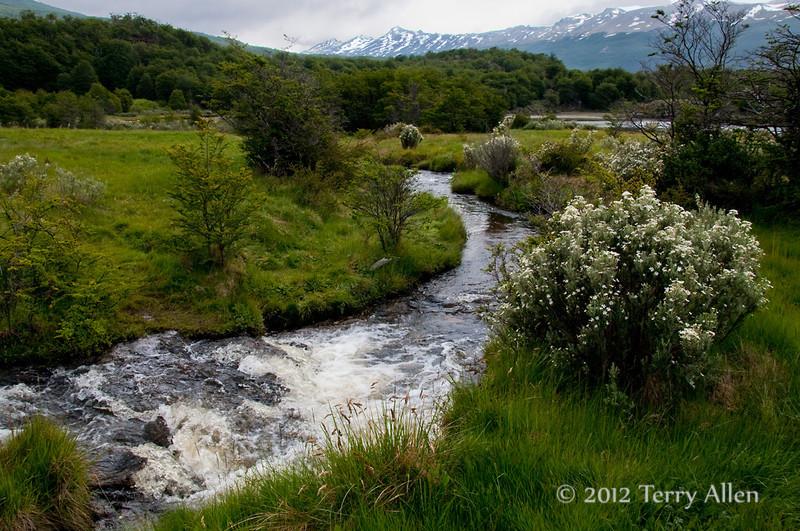 Tierra-de-Fuego-National-Park,-river