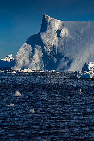 Icebergs - poking hundreds of feet out of the water