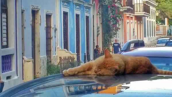Puerto Rico: Day 7: Travel to Old San Juan