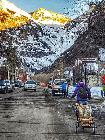 #dog in a #wagon, so #telluride , #colorado #photooftheday #day51