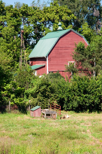 Barn In Trees Portrait View