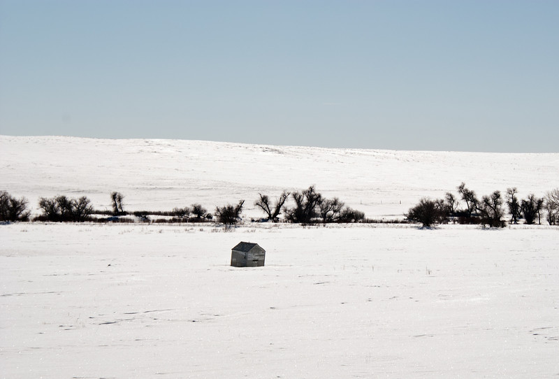 Cold Winter day on the Prairie