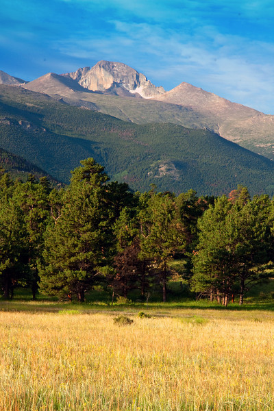 Longs Peak North Meadow Portrait View