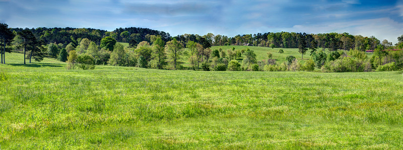 Hilll Country Panorama