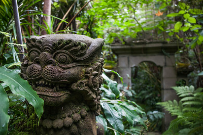 Close-up of dragon statue in garden - USA - Hawaii