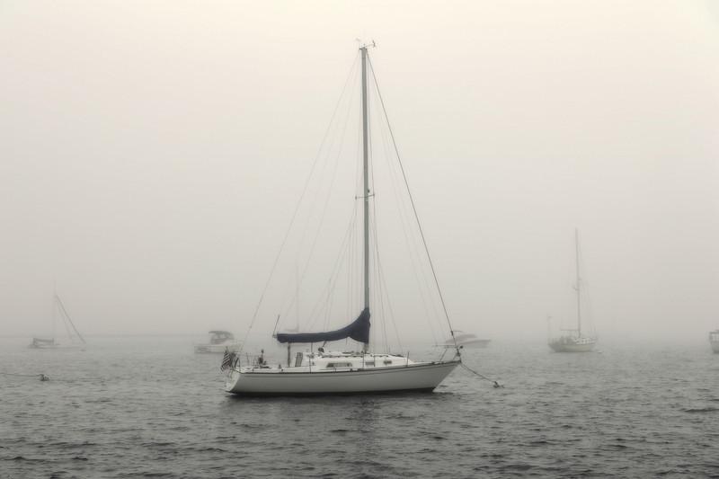Foggy Mooring