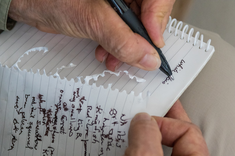 Close up of a scientist taking notes in the field of specific bird species spotted in the wild.