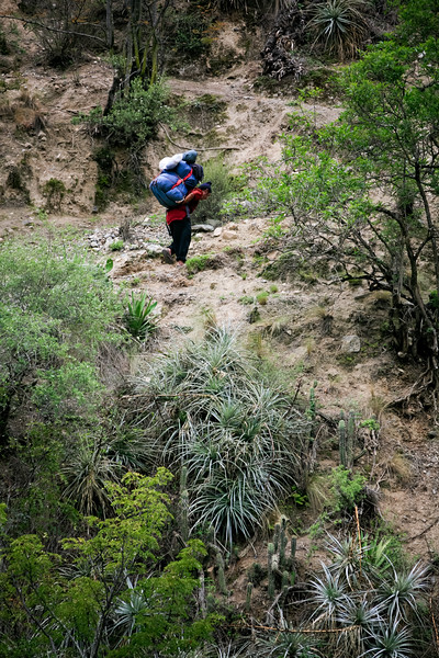 Woman hiking at Inca Trail - Peru