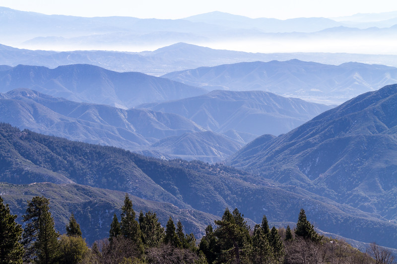 View overlooking San Bernadino Valley and mountain range with forest in foreground - California - USA