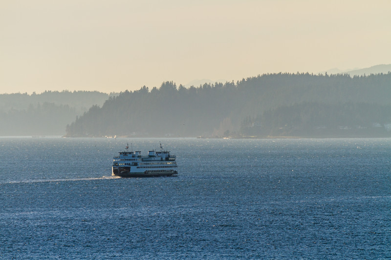 Passenger ferry on sea and trees in background - USA - Washington - Seattle