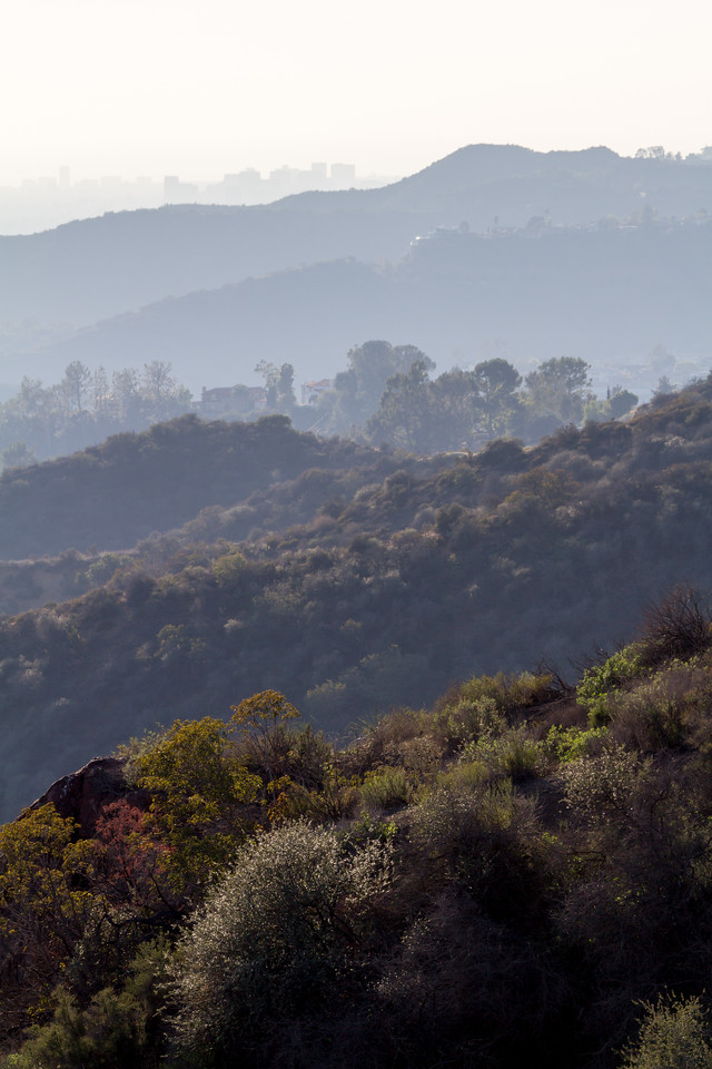 View of Santa Monic buildings and hills from Hollywood Sign - USA - California - Los Angeles