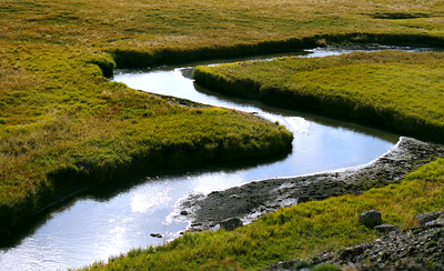 Yellowstone Creek