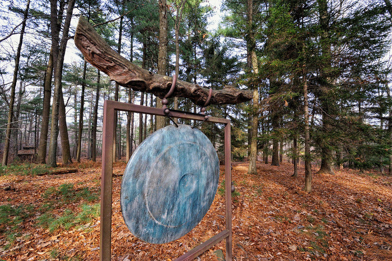 Forest Gong